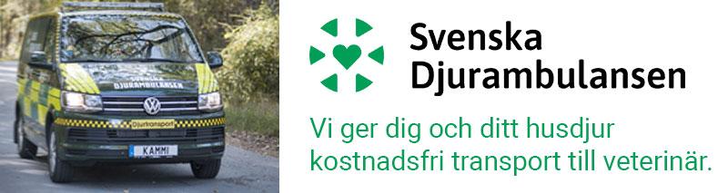 Svenska Djurambulansen