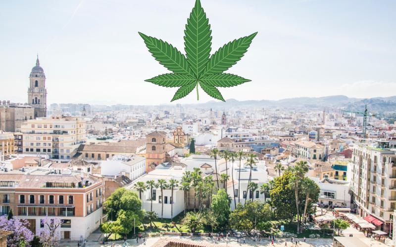 Malaga- En stoners manual till Cannabis social clubs