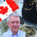 Legalisering av cannabis fungerar för att minska den kriminella sektorn