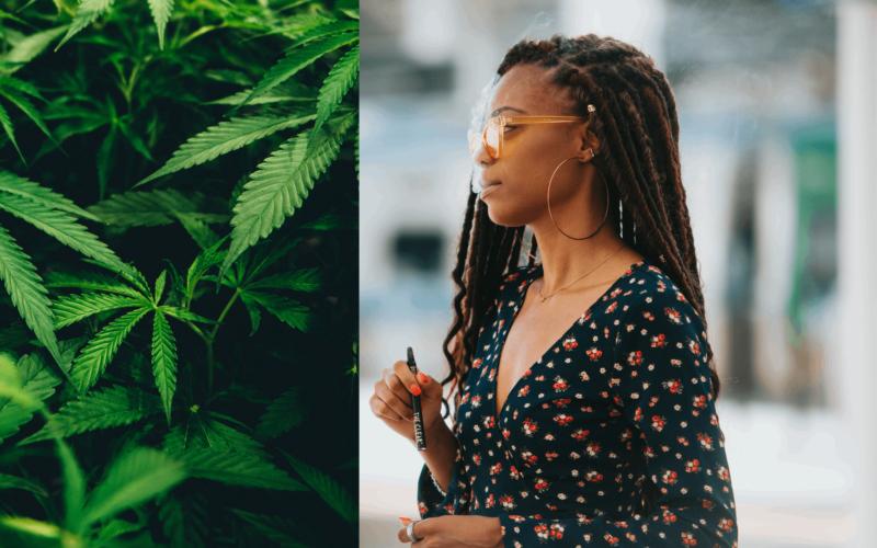 Kvinnliga cannabischefer diskuterar hur man uppnår jämställdhet