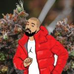 Drake blir delägare i Bullrider