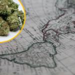 Latinamerikas nästa stora exportvara – cannabis