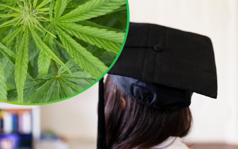 Onlinekurs för läkare i Storbritannien om cannabis