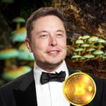 Elon Musk förutser om bland annat Psykotropa läkemedel